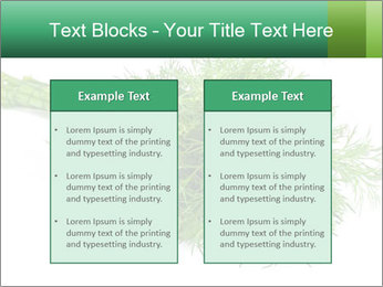 0000078649 PowerPoint Template - Slide 57