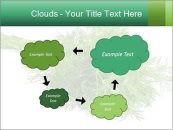 0000078649 PowerPoint Template - Slide 72
