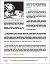 0000078650 Word Templates - Page 4