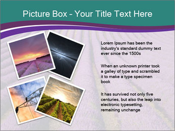 0000078652 PowerPoint Template - Slide 23