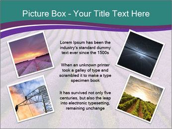 0000078652 PowerPoint Template - Slide 24
