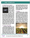 0000078652 Word Template - Page 3