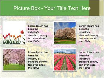 0000078653 PowerPoint Template - Slide 14