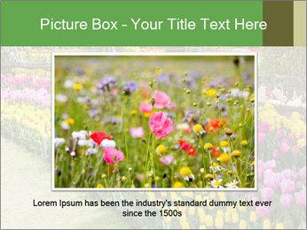 0000078653 PowerPoint Template - Slide 15