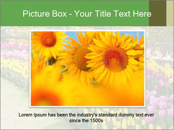 0000078653 PowerPoint Template - Slide 16
