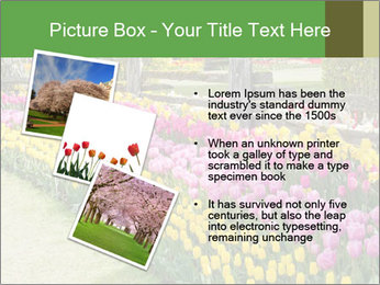 0000078653 PowerPoint Template - Slide 17