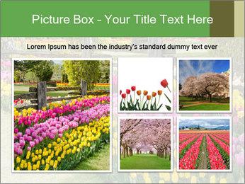 0000078653 PowerPoint Template - Slide 19