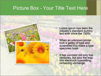 0000078653 PowerPoint Template - Slide 20