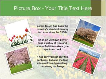 0000078653 PowerPoint Template - Slide 24