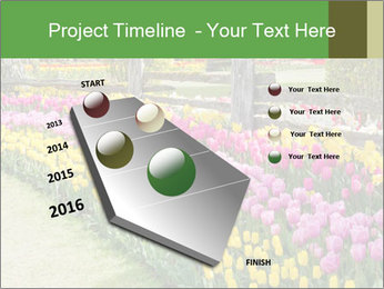 0000078653 PowerPoint Template - Slide 26