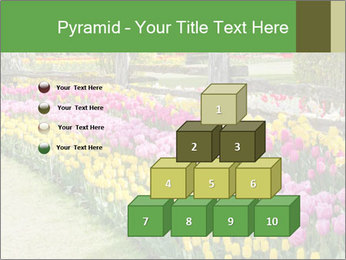 0000078653 PowerPoint Template - Slide 31