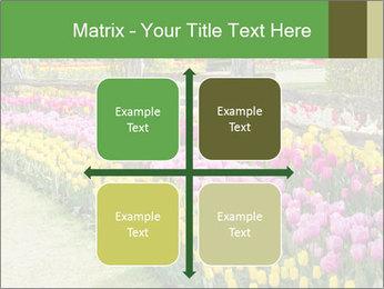 0000078653 PowerPoint Template - Slide 37