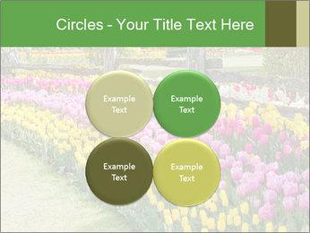 0000078653 PowerPoint Template - Slide 38