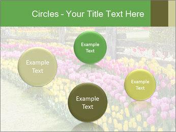 0000078653 PowerPoint Template - Slide 77