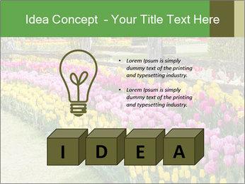 0000078653 PowerPoint Template - Slide 80