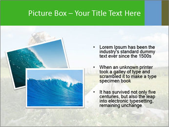 0000078655 PowerPoint Templates - Slide 20