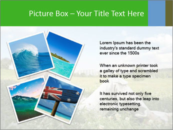 0000078655 PowerPoint Templates - Slide 23