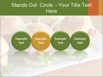 0000078673 PowerPoint Template - Slide 76