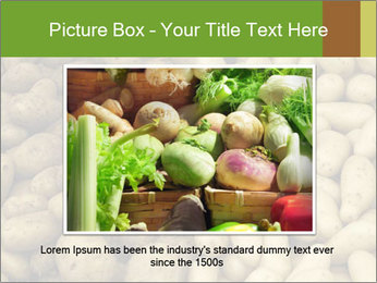 0000078675 PowerPoint Template - Slide 15