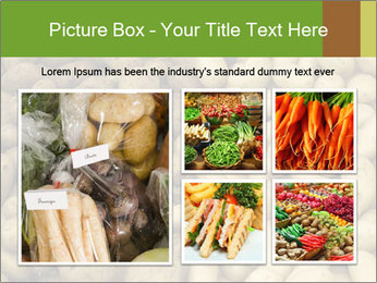 0000078675 PowerPoint Template - Slide 19