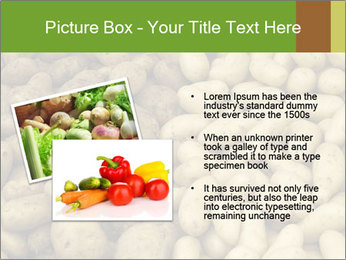 0000078675 PowerPoint Template - Slide 20