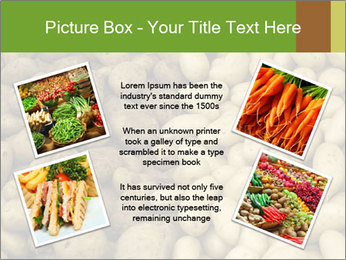0000078675 PowerPoint Template - Slide 24