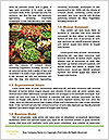 0000078675 Word Templates - Page 4