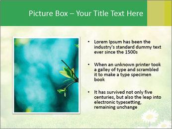 0000078680 PowerPoint Templates - Slide 13