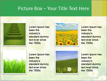 0000078680 PowerPoint Templates - Slide 14