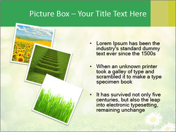 0000078680 PowerPoint Templates - Slide 17