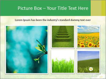 0000078680 PowerPoint Templates - Slide 19