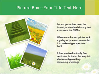 0000078680 PowerPoint Templates - Slide 23