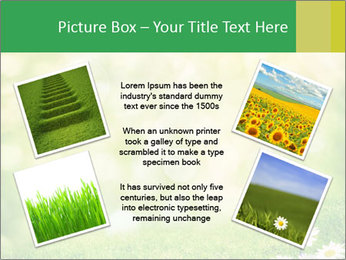 0000078680 PowerPoint Templates - Slide 24