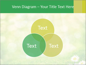0000078680 PowerPoint Templates - Slide 33