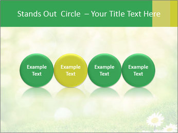0000078680 PowerPoint Templates - Slide 76
