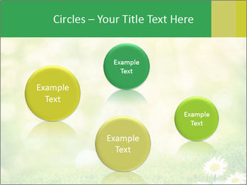 0000078680 PowerPoint Templates - Slide 77
