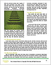 0000078680 Word Templates - Page 4