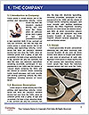 0000078681 Word Template - Page 3