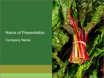 0000078686 PowerPoint Template - Slide 1