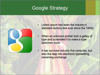 0000078686 PowerPoint Template - Slide 10