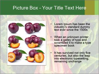 0000078686 PowerPoint Template - Slide 13