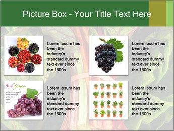 0000078686 PowerPoint Template - Slide 14