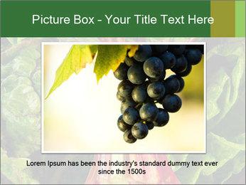0000078686 PowerPoint Template - Slide 15