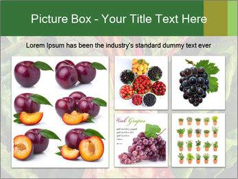 0000078686 PowerPoint Template - Slide 19