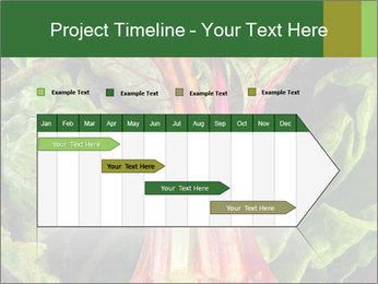 0000078686 PowerPoint Template - Slide 25