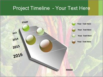 0000078686 PowerPoint Template - Slide 26