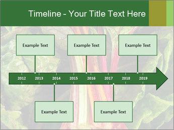 0000078686 PowerPoint Template - Slide 28