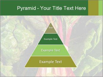 0000078686 PowerPoint Template - Slide 30