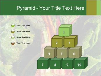 0000078686 PowerPoint Template - Slide 31