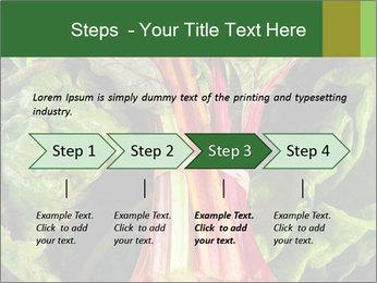 0000078686 PowerPoint Template - Slide 4